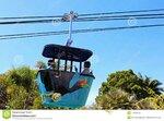 looking-up-to-skyfari-aerial-tram-san-diego-zoo-san-diego-california-skyfari-aerial-tram-san-d...jpg