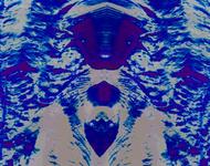 20210215_033614.jpg.png
