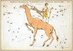 1280px-Sidney_Hall_-_Urania's_Mirror_-_Camelopardalis,_Tarandus_and_Custos_Messium.jpg