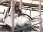 Pirates World Wild Mouse (60's) 5.PNG