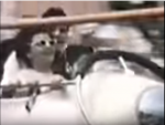 Pirates World Wild Mouse (60's) 6.PNG