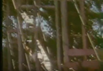 Riverview Park in Chicago Wild Mouse (late 50's and early 60's) 5.PNG