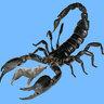 Cmdr Scorpion