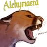 Alchymaera