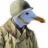 CapSeagull